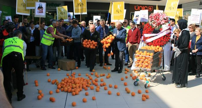 El camp valencià exigeix la inclusió dels 90 pobles i cultius marginats en les millores fiscals