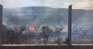 Incendi a Cullera 20 agost 2017-fotografia del Consorci Provincial de Bombers_2
