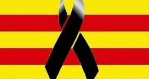 Tots Som Barcelona (3)