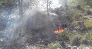 incendi barranc de Canet Llauri 13-set-2017_2