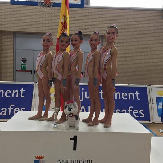 Autonòmic de gimnàstica a Almussafes-2017 (1)