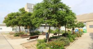 Parc residencia Almussafes_3