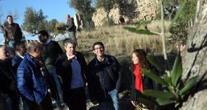 El president de la Diputacio visita el castell de Corbera_4