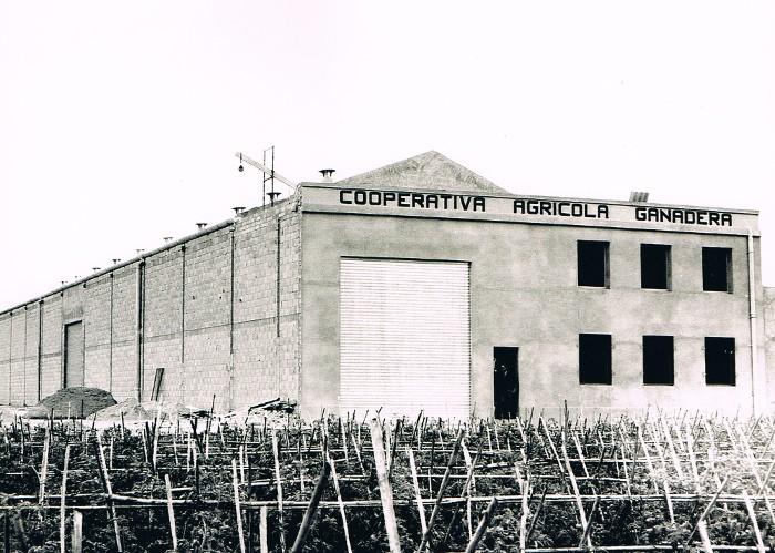 cooperativa-agricola-almussafes-antic-magatzem