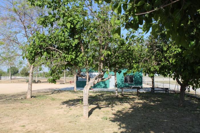 Dues persones vigilaran les zones verdes d'Almussafes en un pla d'ocupació de la Diputació