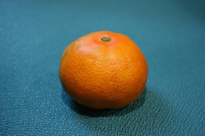 Denuncien la introducció clandestina d'una taronja procedent d'un país infestat de 'greening'