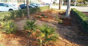 Almussafes actuacions municipals en zones verdes  4