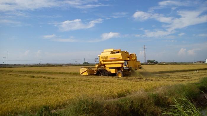 AVA-ASAJA lamenta que la UE desconsidere als cítrics, l'arròs i la mel en l'impacte de l'acord amb Mercosur